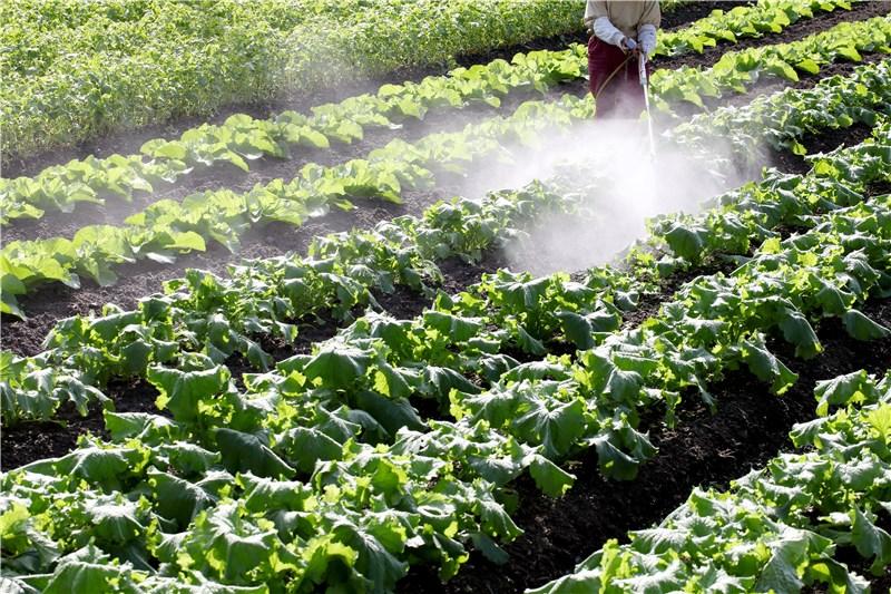 子どもの発達障害に農薬が原因?
