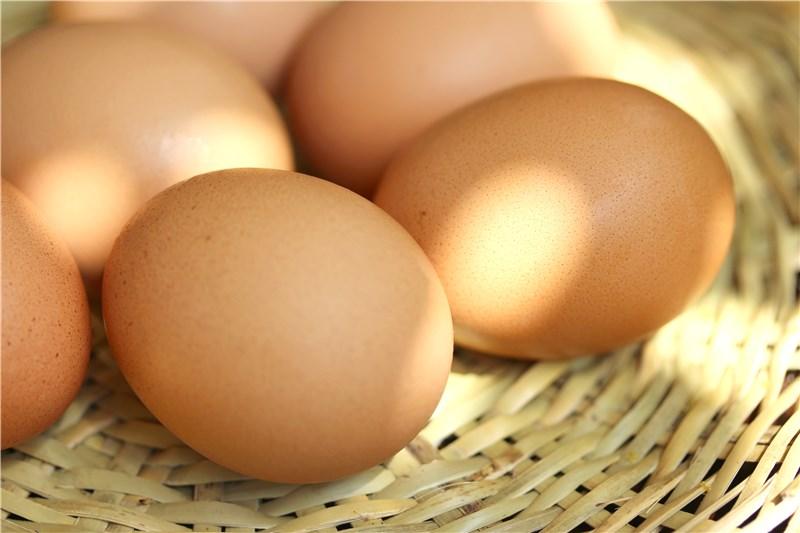 「卵」と「玉子」の違いって何?
