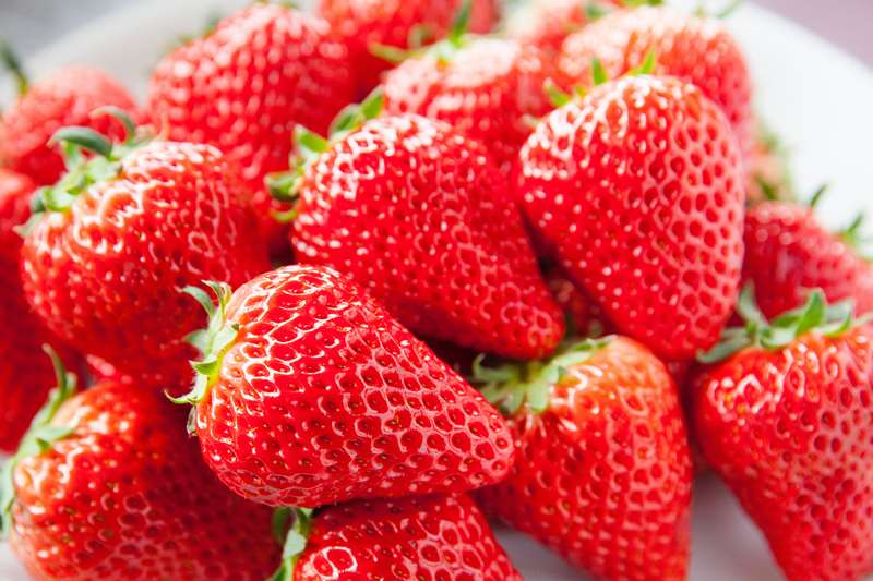 子供からお年寄りまで人気なイチゴ